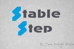 Logo Stable Step